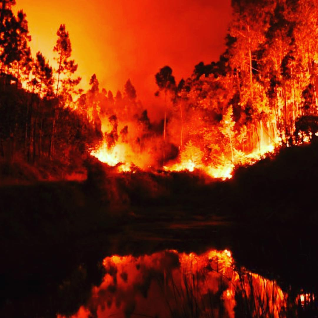 The Fires in Portugal have raged once again wreaking havochellip