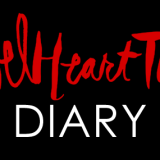 Rebel Heart Tour Diary